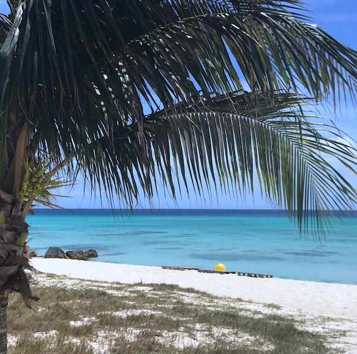Ten Amazing Things To Do in Aruba